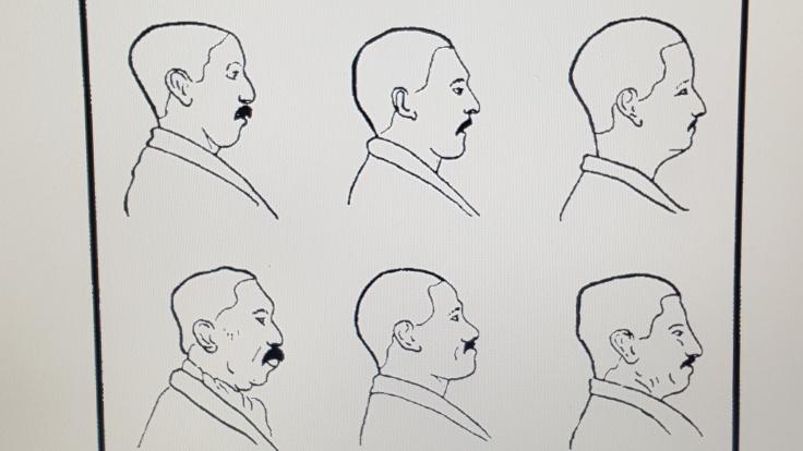branthwaite-line-drawings
